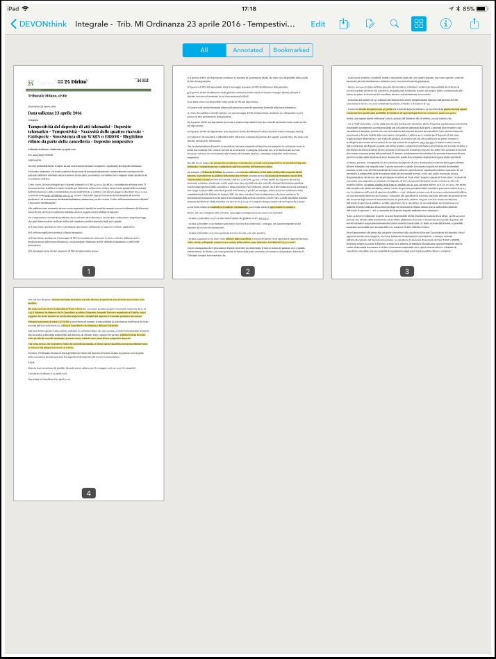 10---visualizzazione-dell-intero-pdf.png