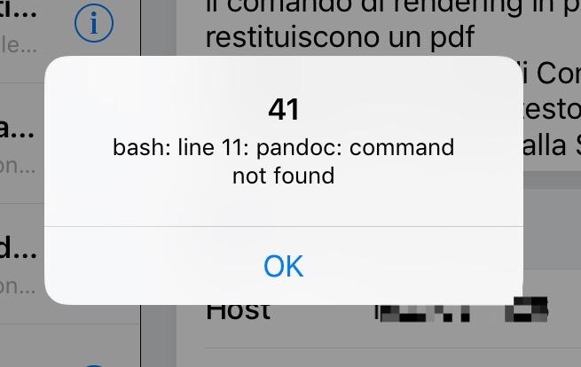 06 - pandoc problemi in Comandi rapidi.jpg