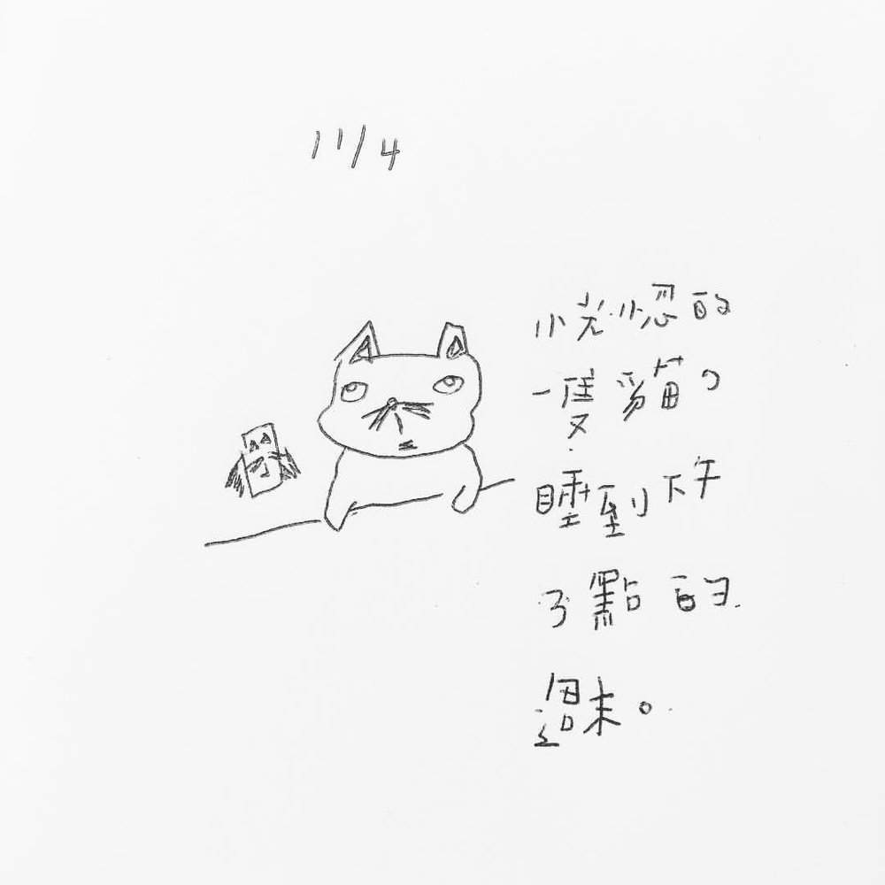 11.04/2017