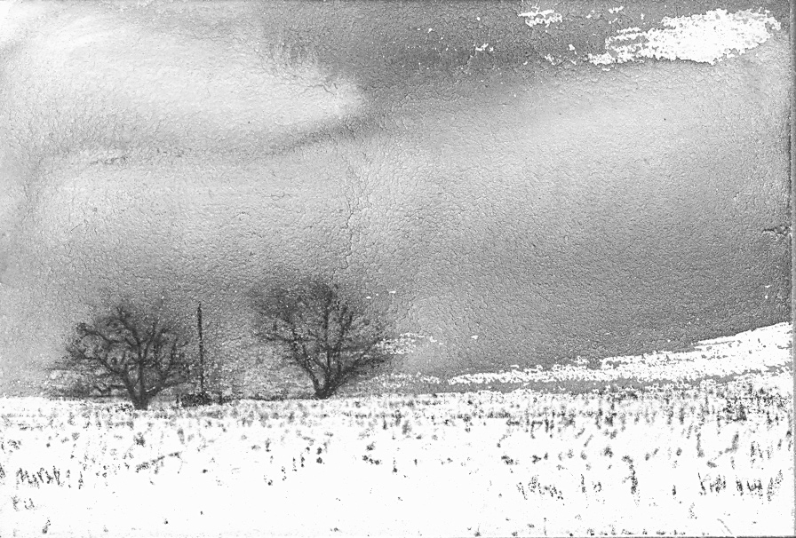 winter field #6.jpg
