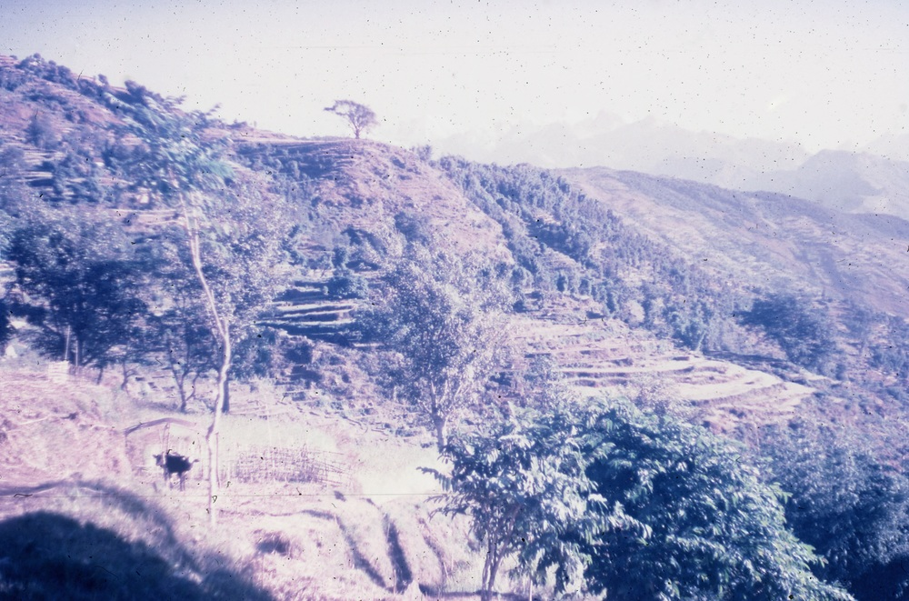 Landscape: fields towards Dorpu in Mukli, Nepal, by Nick Allen, 1970. ©  Pitt Rivers Museum, University of Oxford. All Rights Reserved