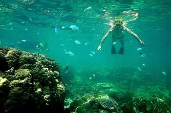 snorkeling01.jpg