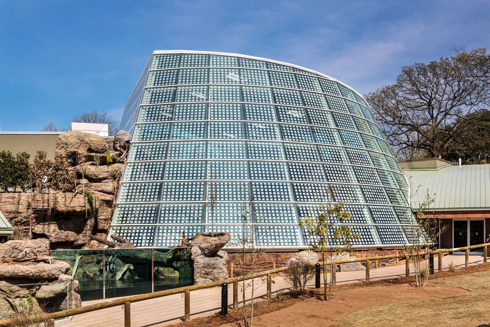 Zoo Atlanta - Reptile House // Clients: Architect: Torre Design // Builder: Winter Construction // Exhibit Contractor: Drill Construction