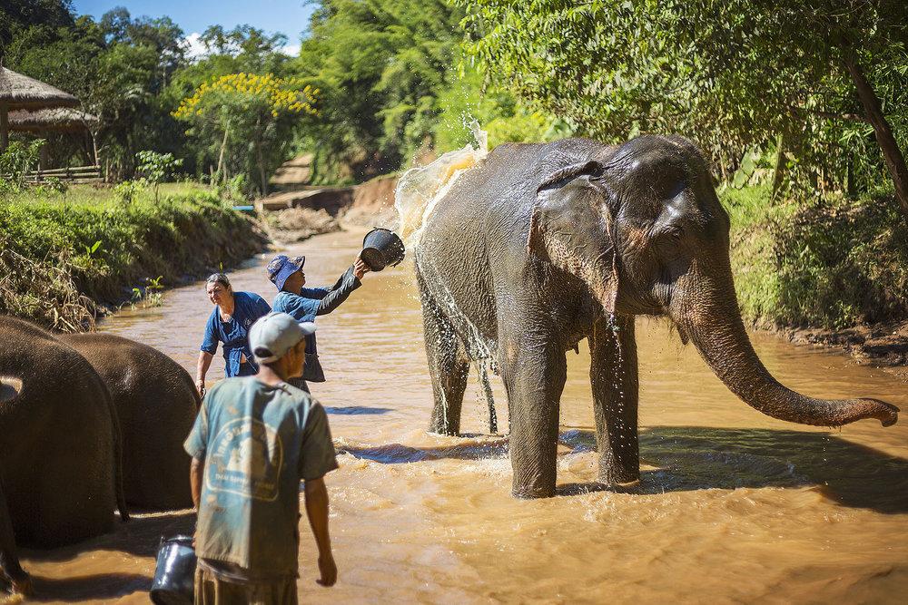 Thailand_0M2A9846-e_webuse.jpg