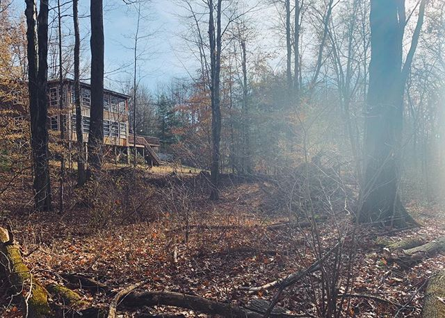 Grandpa's house is medicine. Forest bathing after pies and turkeys