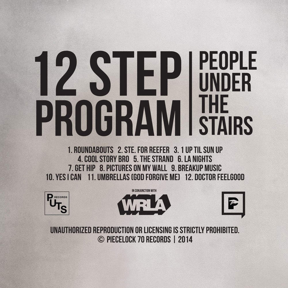 12-Step-Program-Back-Cover-FINAL.jpg