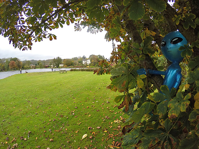 Even aliens have been checking out what has been going on at Exe Valley Fishery recently!