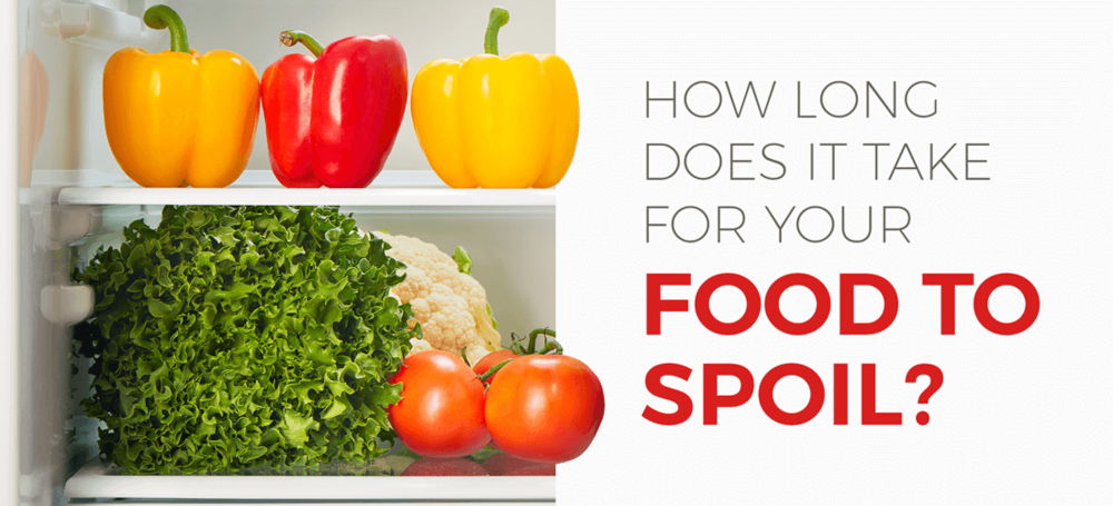 how long does it take for your food to spoil