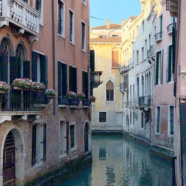 Winter in Venice is cold, so cold. We still have gelato. Lovers pause on bridges, tourists scramble for trinkets, the water flows.
