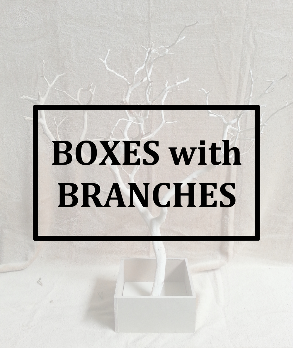 BRANCH BOX BUTTON.jpg