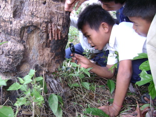 2007-02-27 - KE - kids tree discover science education.jpg