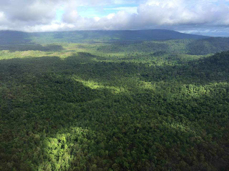 Southern Cardamom National Park