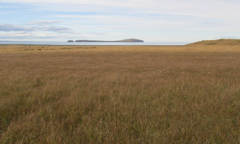 Málmey Ísland, Skagafjörður, Iceland, 2017