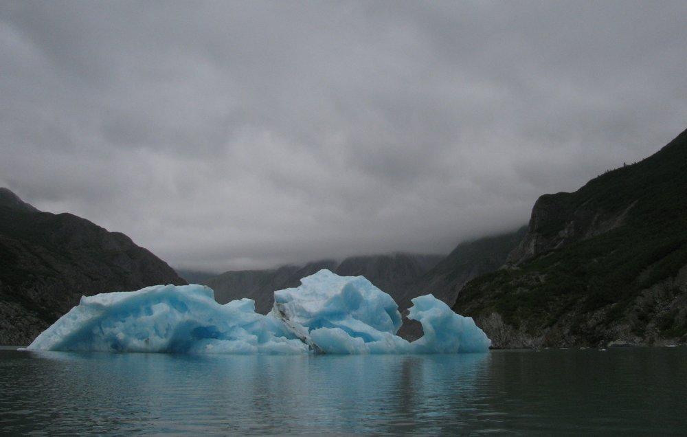 Muir Inlet, Glacier Bay National Park & Preserve, Alaska, 2011