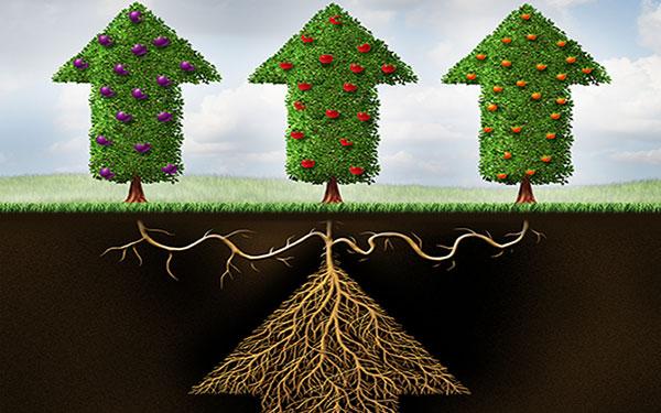 bigstock-Diversified-Investing-77480831.jpg