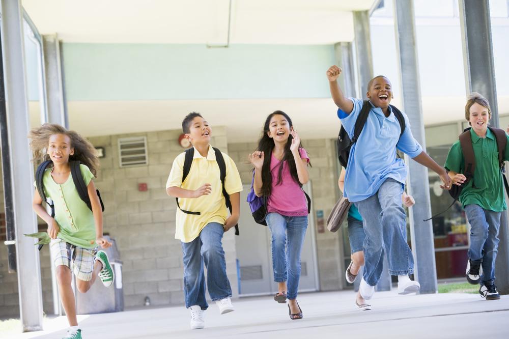 SCHOOLS<a href=/schools>More →</a>