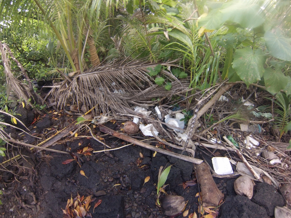 Polystyrene food containers, single-use beverage containers, and other signs of human consumption, are mixed with natural organic plant material at the mangroves shoreline.