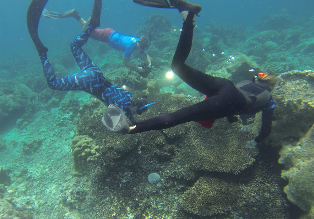 Members of the expedition retrieve sunken plastic. Photo by Amir Using.
