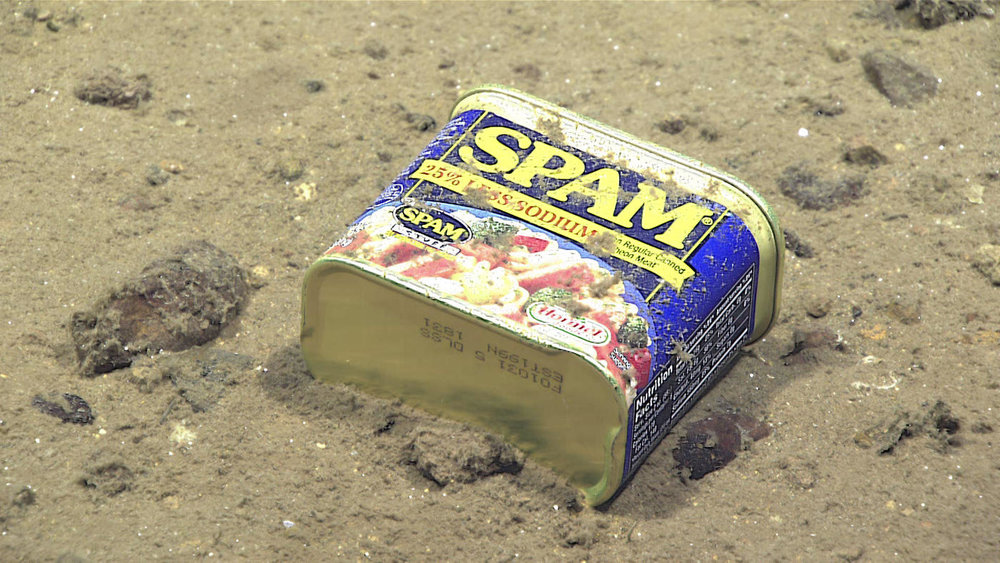A container of Spam rests at 4,947 meters on the slopes of a canyon leading to the Sirena Deep in the Mariana trench. (NOAA Office of Ocean Exploration)