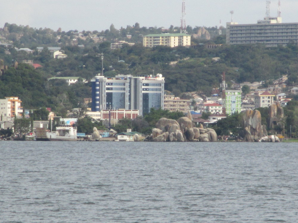 Researchers purchased fish from Mwanza City, Tanzania