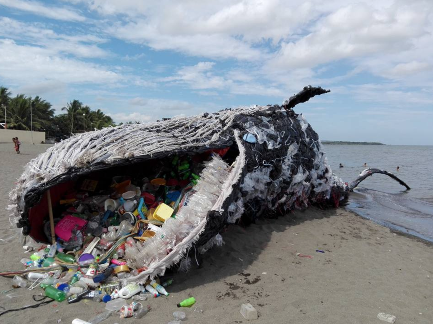 A Giant Beached Whale Illustrates the Plastic Pollution ...