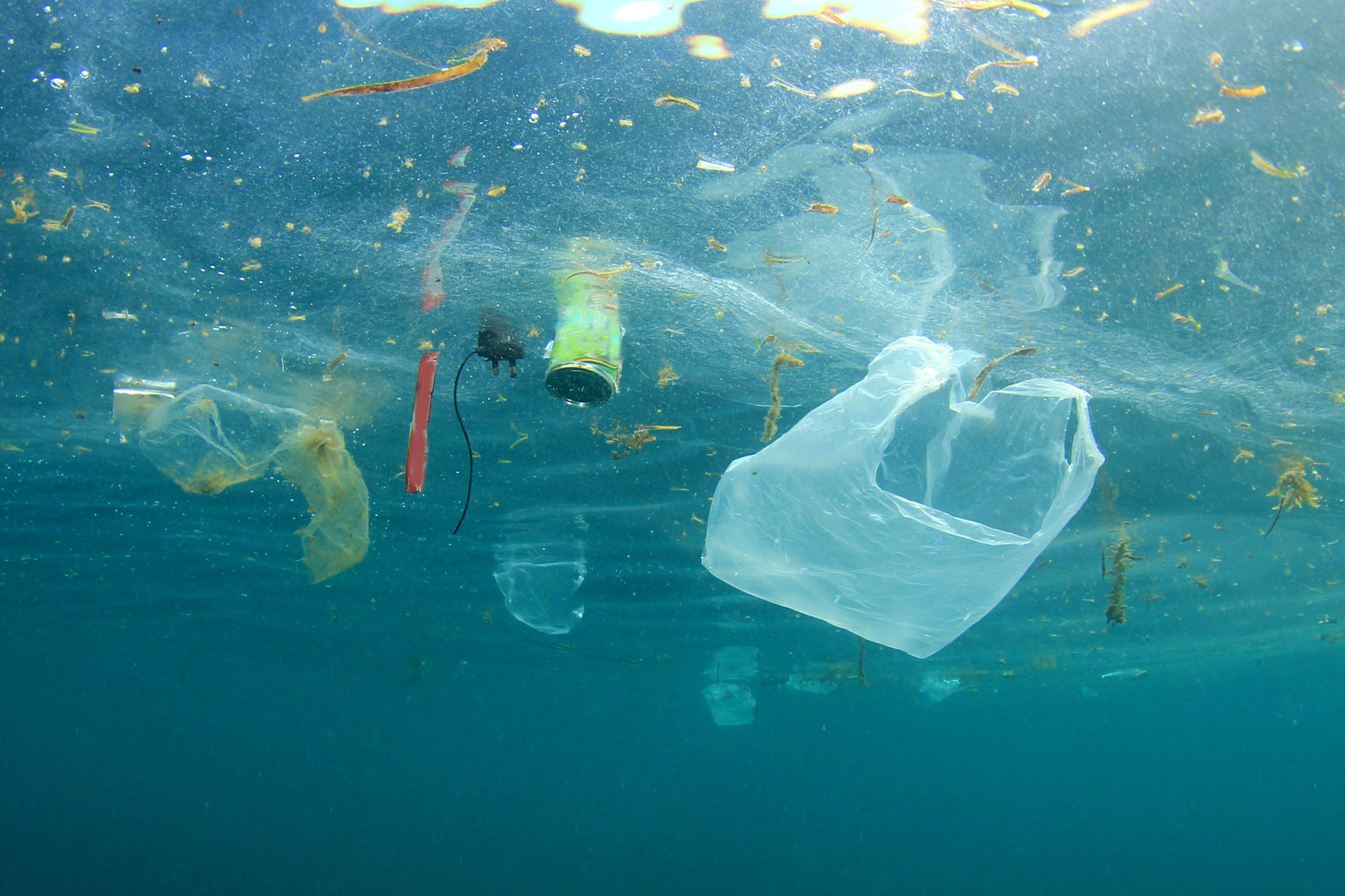 new global study shows the production use and fate of all plastics