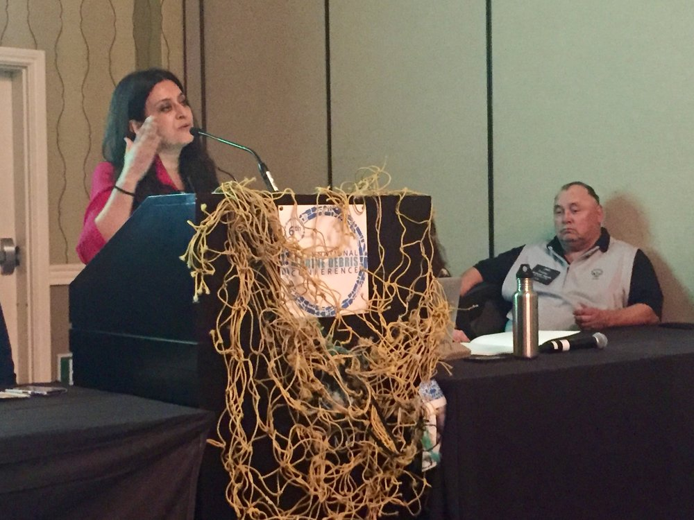 Bharati Chaturvedi of the Chintan Environmental Research & Action Group (New Delhi, India) speaks on the Environmental Justice panel.