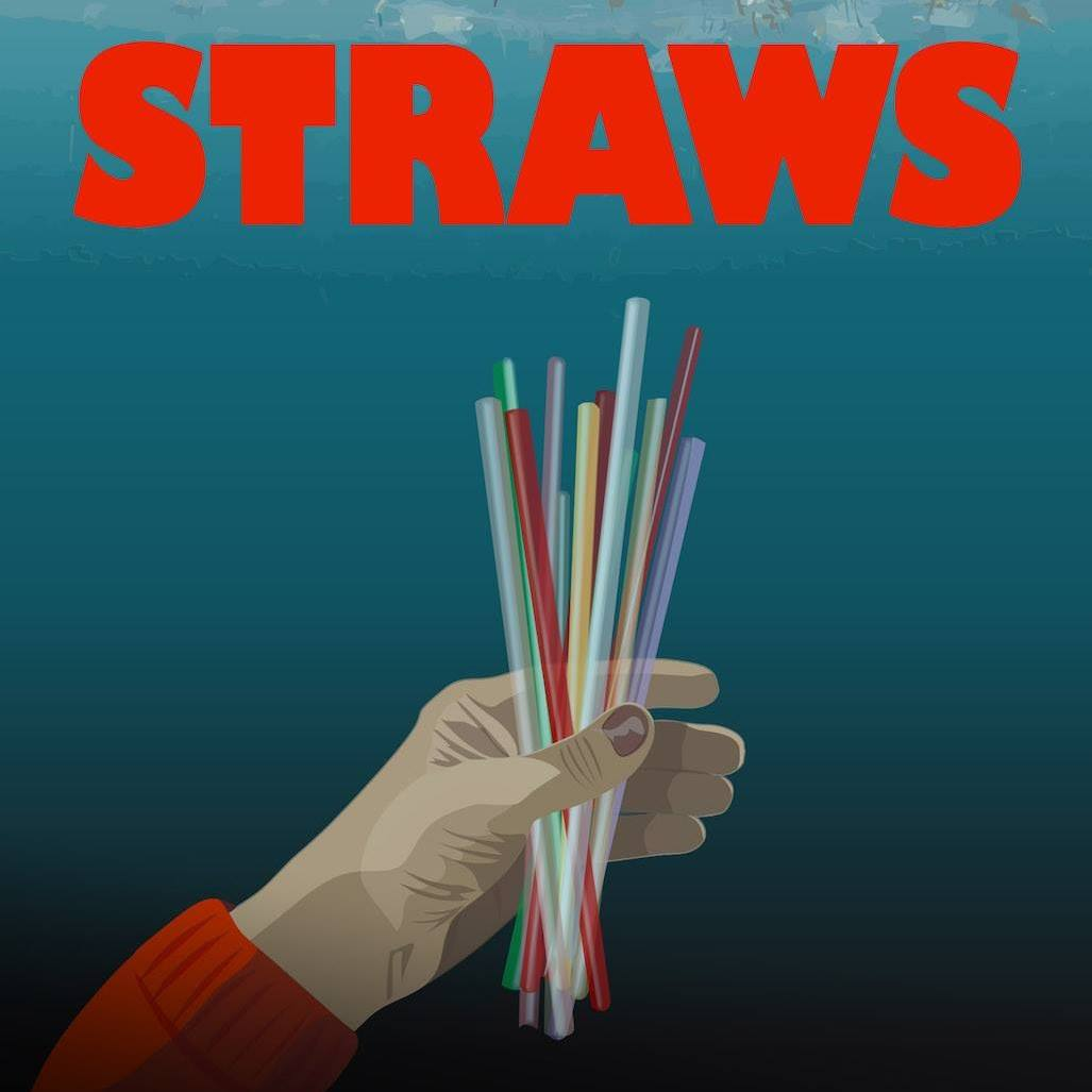 the last plastic straw awards alameda ca for going plastic straw