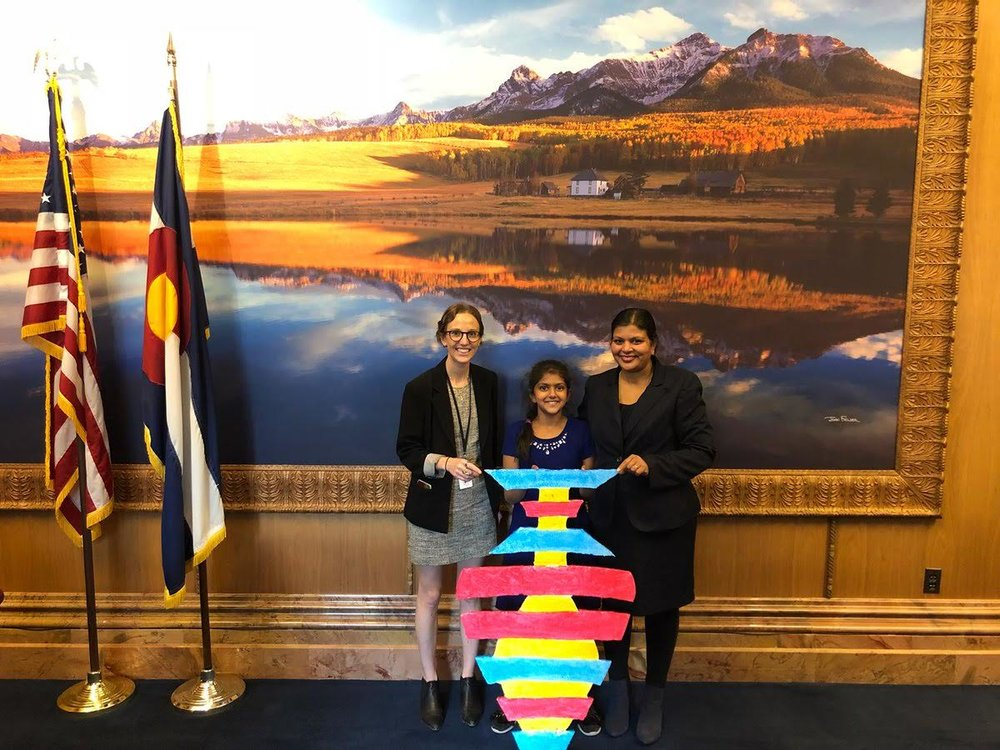 Artwork by Madhvi was on display at the State Capitol from Dec. 10-14 to create public awareness about pollution from polystyrene in local waterways.