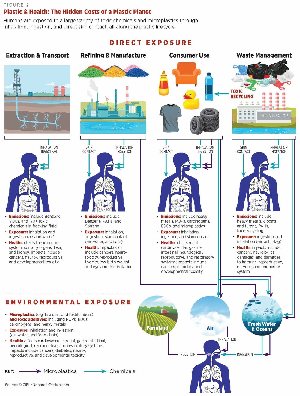 Graphic_Plastic and Health Full Page.jpg