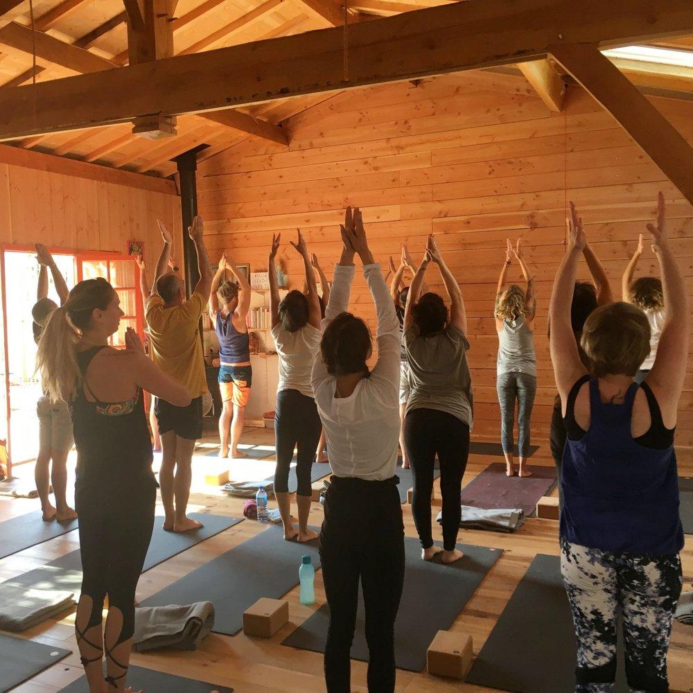 Yoga Classes Every week -