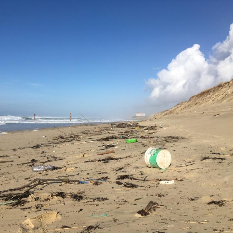 biscarrosse-beach-clean-up.JPG