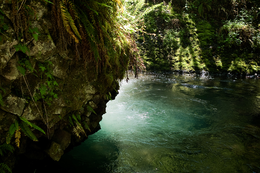PNW_Waterfall_Lagoon.jpg