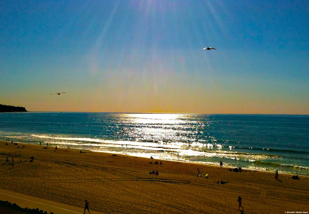 Beachcolor©.jpg