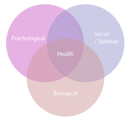 The interplay between  biological  (genetic, biochemical, etc),  psychological  (mood, personality, behavior, etc.), and  social factors  (cultural, socioeconomic, etc.) results in pain being persistent.  This is the biopsychosocial model.