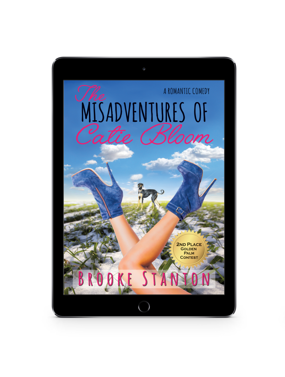 Misadventures Cover_Ipad.png