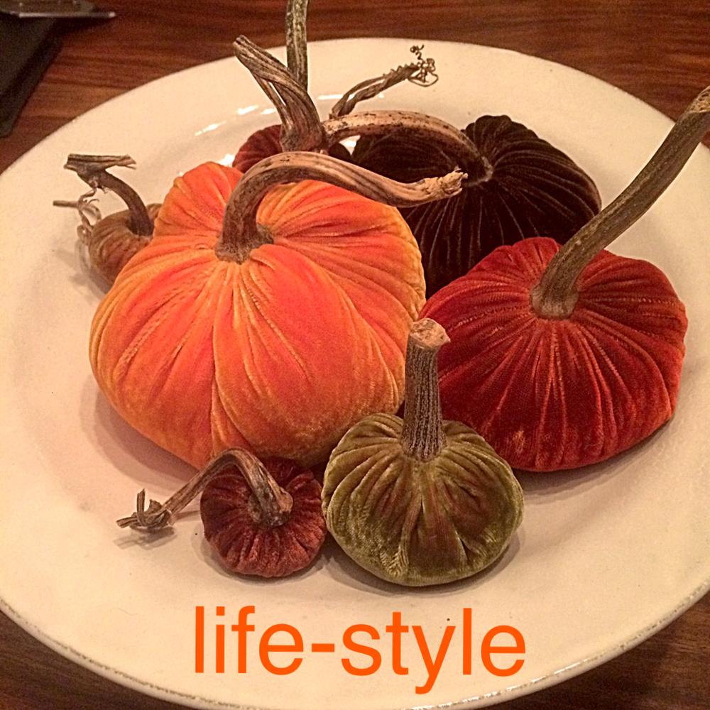 life-style 4a.jpeg