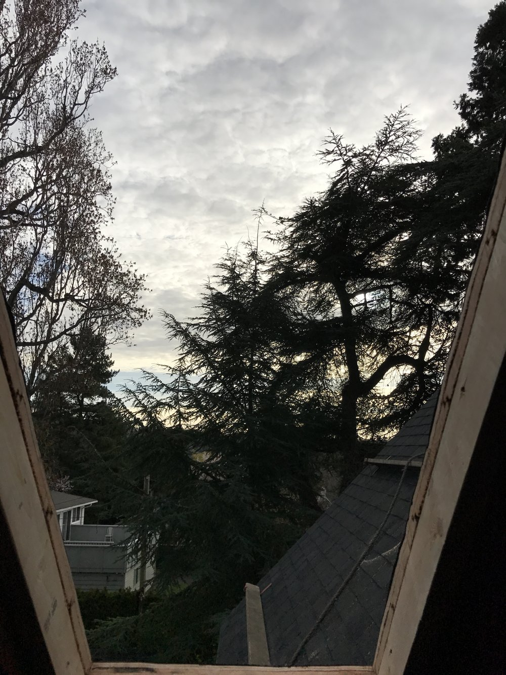 View from one of the skylights
