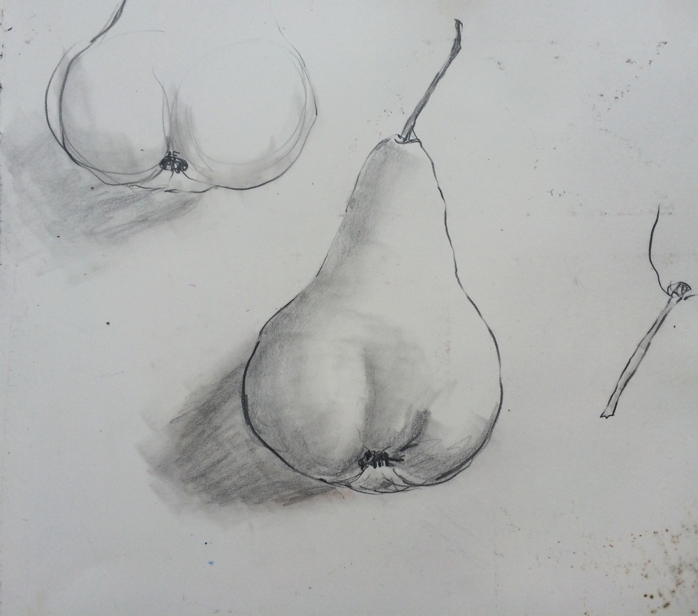 Pear Study: L Doctor Sketchbook