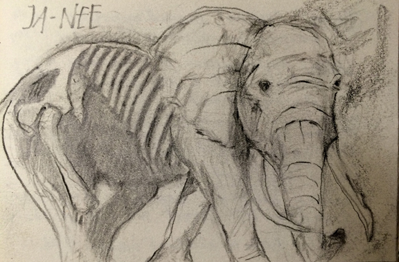 Dream of  Old Man Elephant,  L Doctor Sketchbook