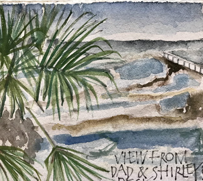 View from our deck, St George Island   L Doctor Sketchbook