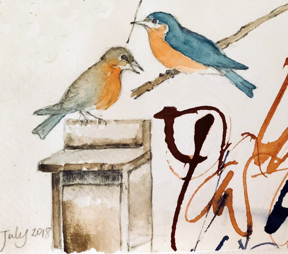 Details from L Doctor sketchbook:  Eastern bluebirds building their nest