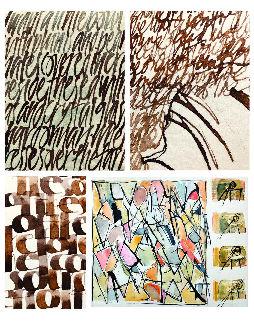 Sketchbook studies using shell, brush, pen, watercolor & ink L Doctor