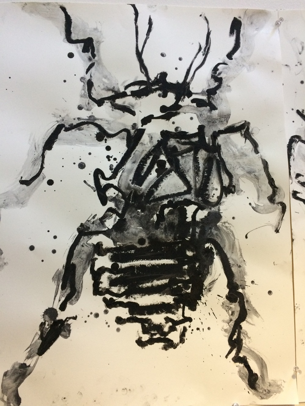 """Insectum IV  24"""" X 19""""   oil stick and graphite"""
