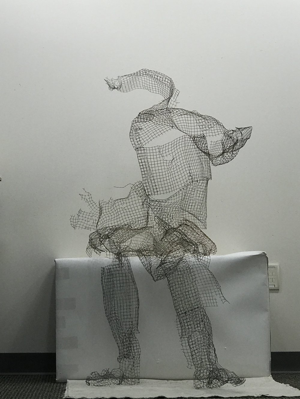 "drifting""   36"" X 45"" X 55""    found object wire cloth"