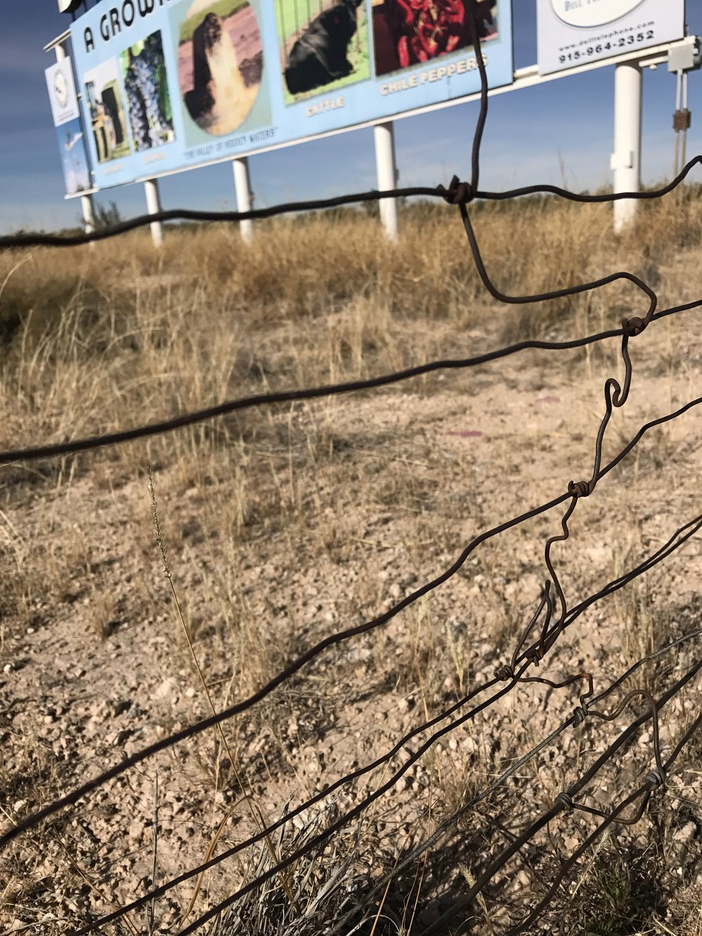 gnarly bayling wire fence.