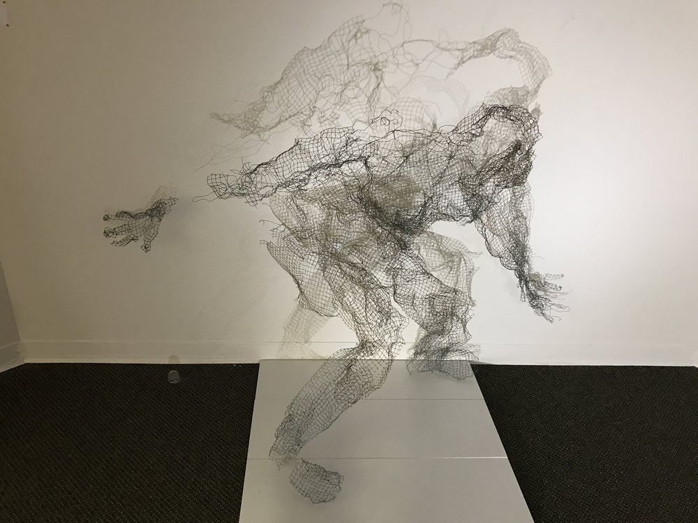 Entropy 6' W X 4' T  X 3' shadow is variable Found object - wire cloth