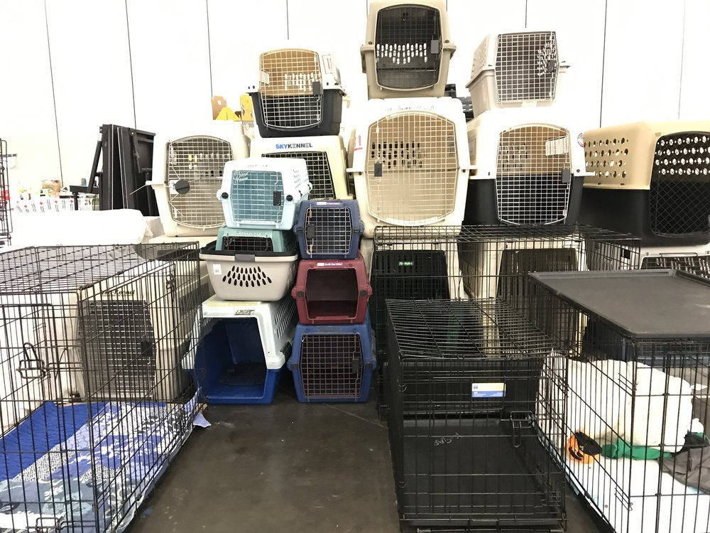 they have a few extra kennels in the family's with pets dormitory at the GRB.   They make a super cool sculpture, hmmm....... ideas.