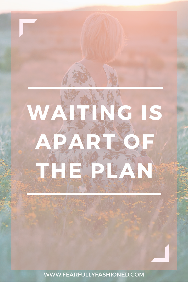 Waiting Is Apart of the Plan | Fearfully Fashioned #patience #faith #FearfullyFashioned