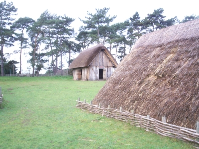 Anglo-Saxon houses at the experimental site at West Stow